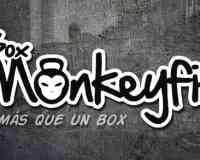 Box Monkeyfit