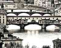 TGF  - Tourist Guide of Florence