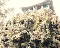 御花园 Imperial Garden