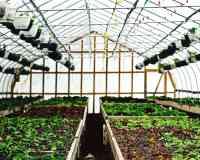 Best places to shop in shelton connecticut afabuloustrip stone gardens farm workwithnaturefo