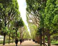 Botanical Garden of Paris (Jardin des Plantes)