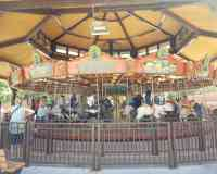Conservation Carousel at Hogle Zoo