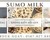 Sumo milk - Sữa thảo mộc, sữa từ hạt